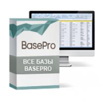 Партнерка BasePro (профессиональные базы организаций)